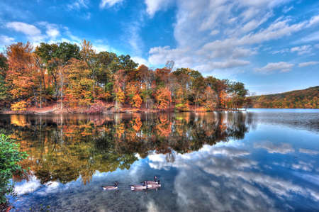 reflect: Autumn colors reflect in the water with a blue sky as canadian geese swim in Loch Raven Maryland Stock Photo