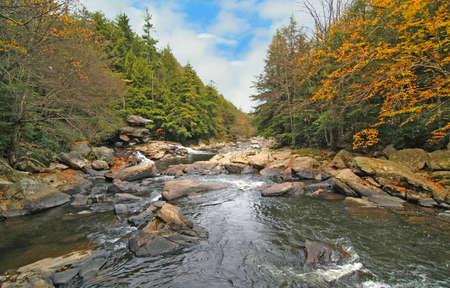 appalachian: Wild river in Swallow Falls Maryland in Appalachian mountains Stock Photo