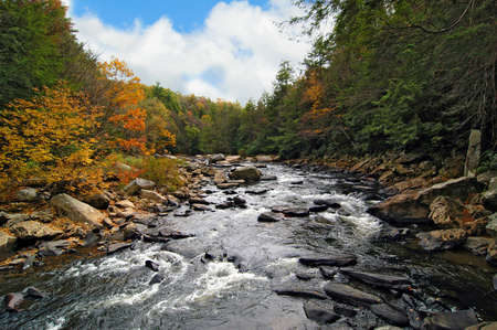 appalachian mountains: Wild river in Swallow Falls in the Appalachian Mountains in Autumn