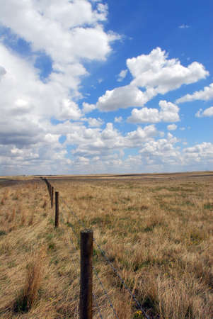 barbed wire fence: Ranch in Montana with big cloudy sky and barbed wire fence thru grassland