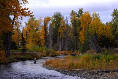 ニニルチック、アラスカの野生の川の秋のフライフィッシングの男