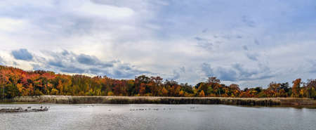 Panoramic landscape of a Maryland lake with Autumn foliage and Canada Geese