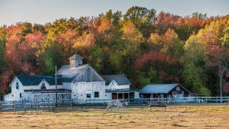 Autumn colors at a Maryland stable with an old rustic barn during Autumn near sunset Stok Fotoğraf
