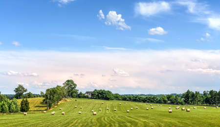 Hay bales scattered over the green rolling fields on a Maryland farm at harvest time Stok Fotoğraf - 81599928