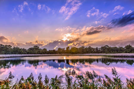 A stunningly beautiful golden sunset on a pond near the Chesapeake Bay in Maryland Stok Fotoğraf