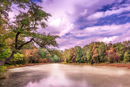 Fall colors abound on a pristine lake near the Chesapeake Bay