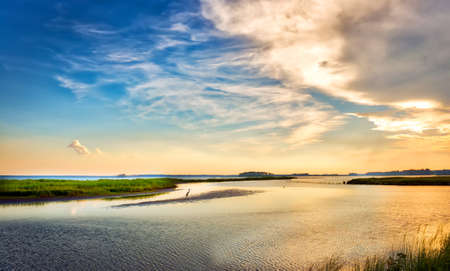 Great Blue Heron standing on a small island watching a beautiful Chesapeake Bay sunset in Maryland Stok Fotoğraf - 87644548