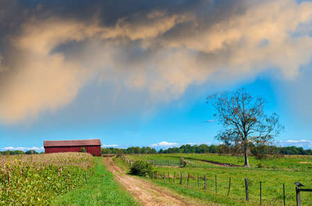 Maryland farm with an old dirt country road leading to a red barn during Spring Stok Fotoğraf