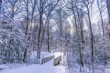 Rustic old walking bridge covered in snow in a frozen forest winter wonderland Stok Fotoğraf