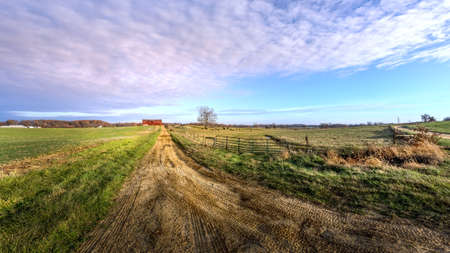 Rural Maryland farm landscape with cows grazing in a field and a long dirt road leading to a red barn Stok Fotoğraf