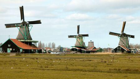 Nederlandse Windmills