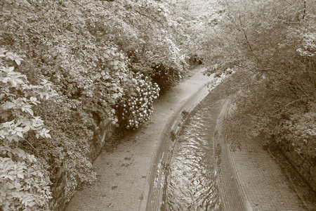 flowing river: flowing river and trees in sepia tone Stock Photo