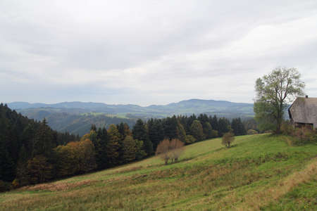 Black Forest near Bernau Stock Photo