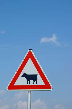 Warning triangle beware of cattle