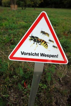 Caution wasps