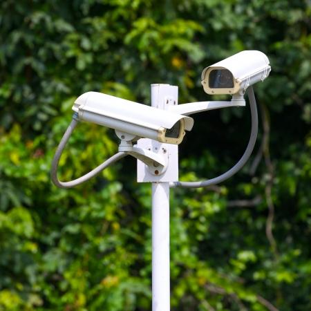 two security surveillance cameras near green forest Standard-Bild