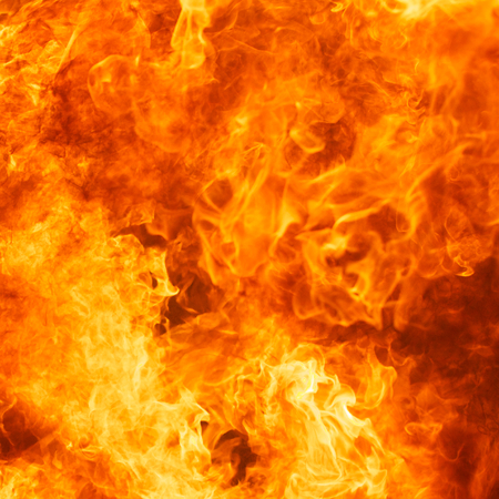 conflagration: blaze fire flame texture background