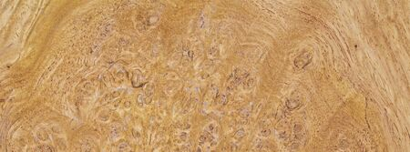 natural burl wood grain texture for banner background