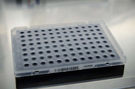 realtime: 96-well plate for real-time PCR Stock Photo