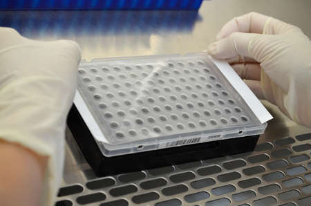sealing: plate sealing