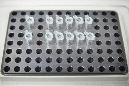 pcr: sample on the PCR machine