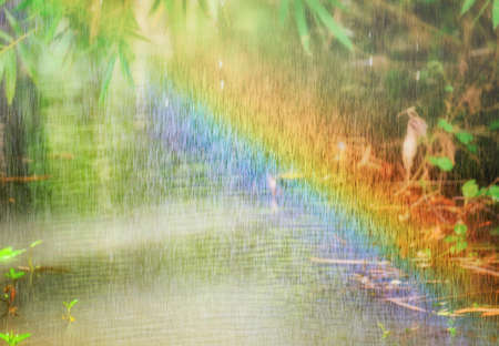 While it is raining and there is light from the sun, there is a natural rainbow. Stock fotó