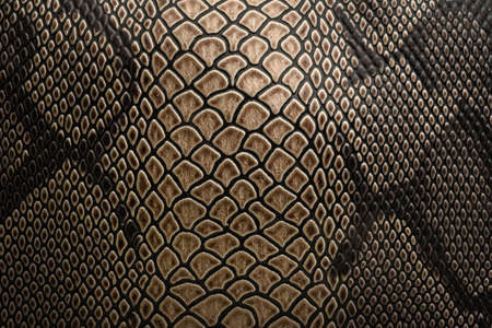 Le motif de fond du motif serpent est brun naturel.