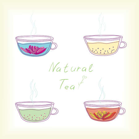 set of tea cups with natural tea  vector illustration  Illustration