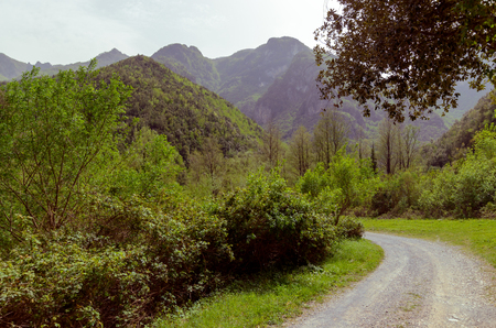 View from the road, mountains of Italy. The green mountains of the beautiful Pollino Reserve Stock Photo