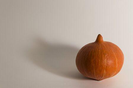 High resolution image of a pumkin