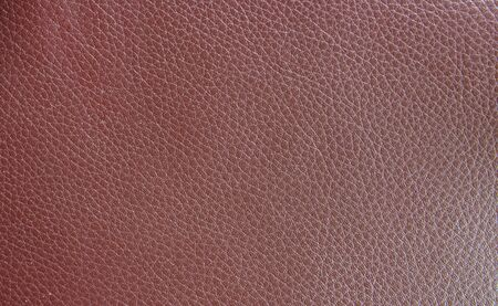 bordeau: A High resolution picture of genuine leather