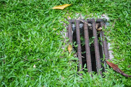drain: Drain hole on grass field Stock Photo