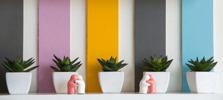 Interior decoration: Small plants in pots and huging doll put on shelf with colorful background