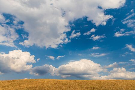 Blue sky and dry grass field on ground, Natural landscrap background