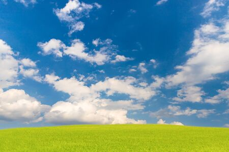 Beautiful blue sky and green field, Natural landscrap background 写真素材