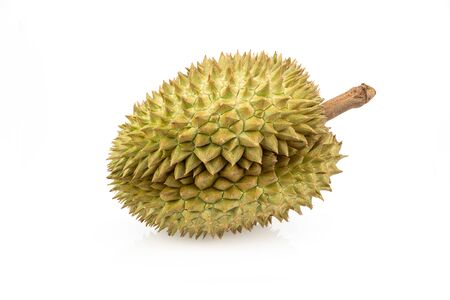 Durian on isolated white background, king of fruit Thailand Zdjęcie Seryjne