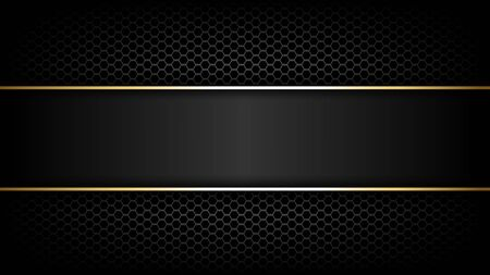 Premium abstract background with Carbon fibre texture and gold line, vector illustration