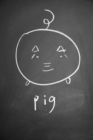 pig sign drawn with chalk on blackboard photo
