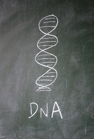 genetic: DNA sign drawn with chalk on blackboard