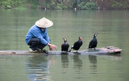 river scape: A Chinese fishermen and cormorants Stock Photo