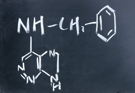cytokinin chemical structure written with chalk on blackboard photo