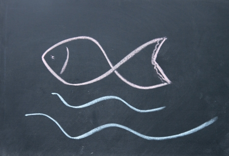 fish sign drawn with chalk on blackboard Stock Photo - 16654870
