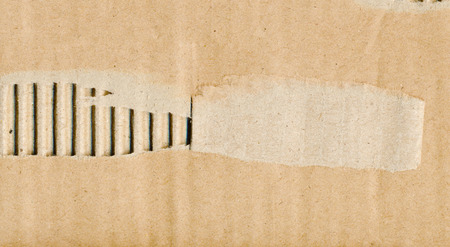 Torn corrugated paper photo