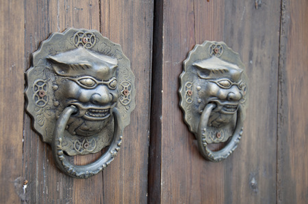Lion-type knocker photo