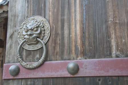 Lion-type knocker photo