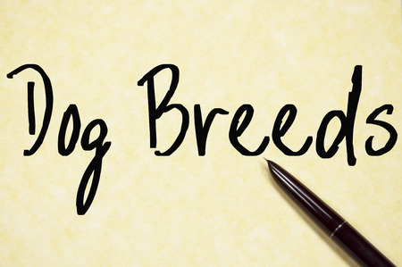 breeds: dog breeds text write on paper