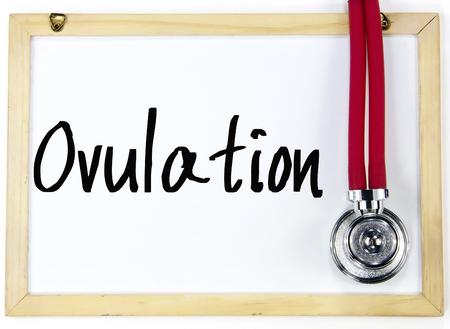 ovulation: ovulation word write on whiteboard Stock Photo