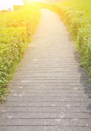 cobblestone: cobblestone pathway