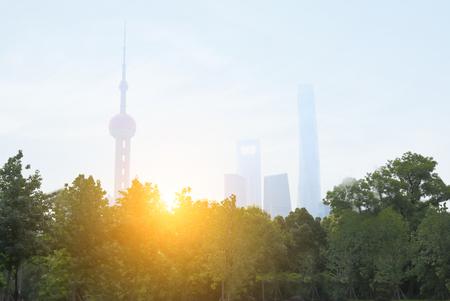 centrality: shanghai cityscape