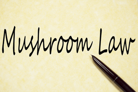 Mushroom law  text write on paper